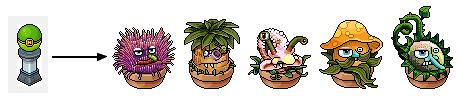 plantepoke