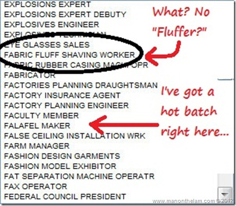 Funny Visa Application Job Titles -- Fabric Fluff Shaving Worker, Falafel Maker