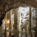 Grotte di Fraassi - Foto Ben Francis CCBY