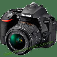 Nikon D5500 Manual de usuario PDF español