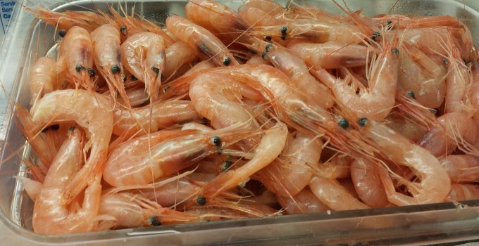 Fresh seafood in again today!