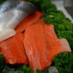 King Salmon Side