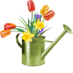 5e3fc32290a3322d812880fc8020d9e3_watering-can-clipart-summer-flower-pencil-and-in-color-watering-watering-can-with-flowers-clipart_640-641