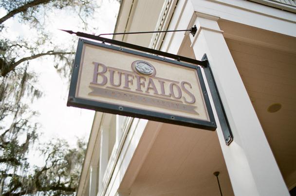 Buffalos Palmetto Bluff