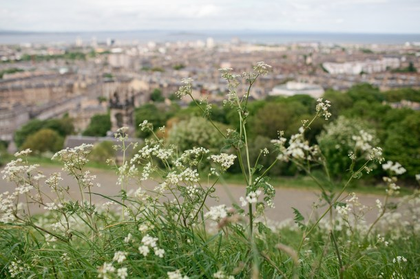 Calton Hill Scotland