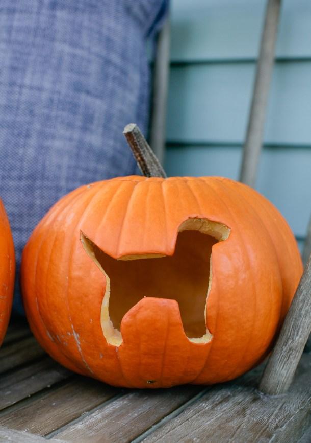 dog-jack-o-lantern