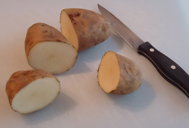 Homemade Potato Stamps (4/6)