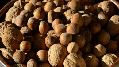 Avellanas y Nueces