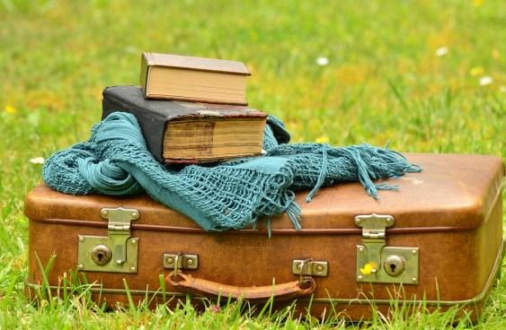 maleta entre la hierva
