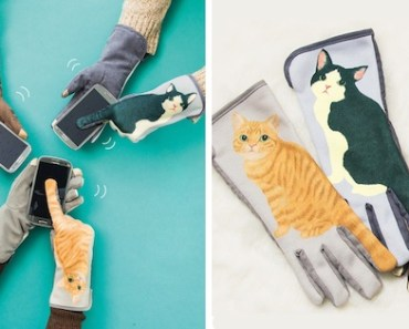 guantes-gatos-cola-fb