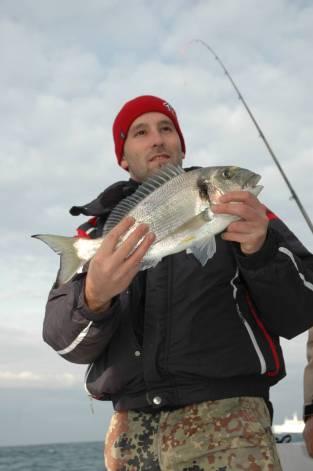 si pesca spesso con il granchio per evitare la mangianza di piccoli pescetti