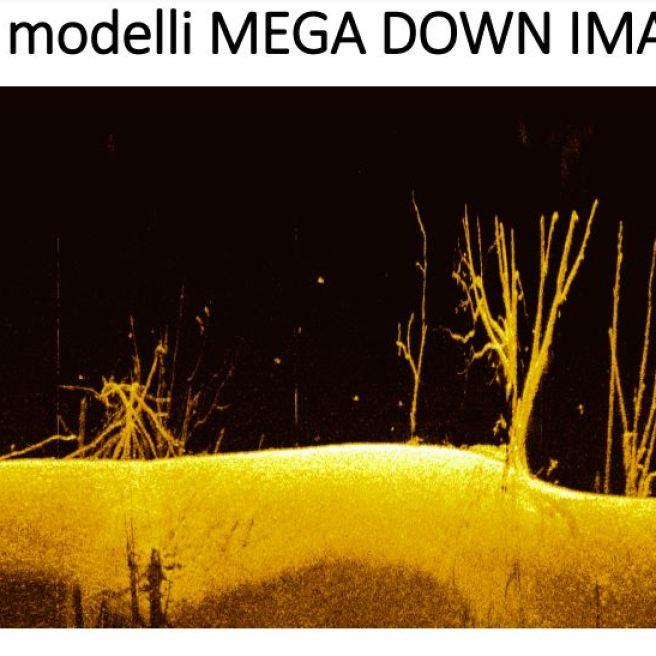 mega vision