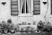 Window Detail, Maniago, Italy