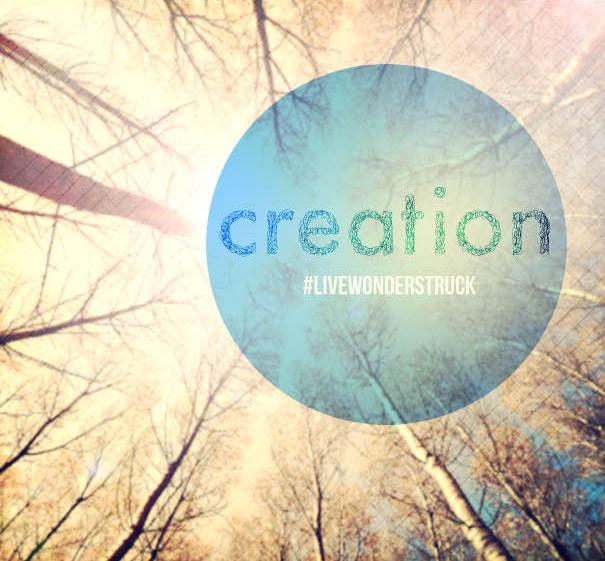 21 Days of Wonder CREATION