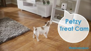 Gadgets: Petzi Treat Cam