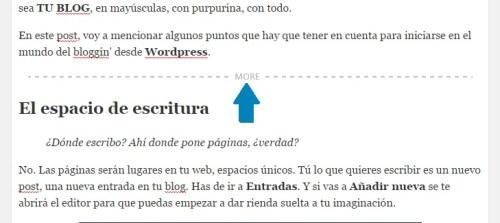 wordpress-barra-etiqueta-more-vista