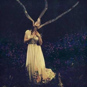 BROOKE SHADENN THE WEEPING TREE