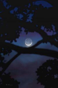 new moon flickr