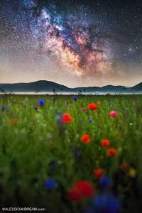 Alessio Andreani Milky Way