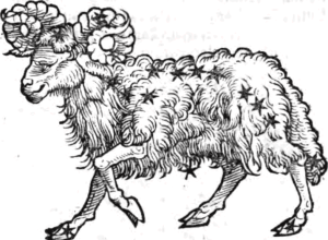 Aries the Ram, from Guido Bonatti Liber Astronomiae