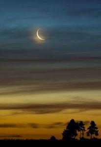 Lua Balsâmica - Reprodução
