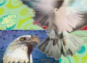 aguia pomba