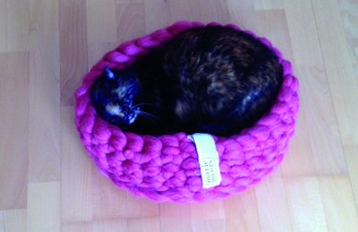 Cat basket makes Tiro happy
