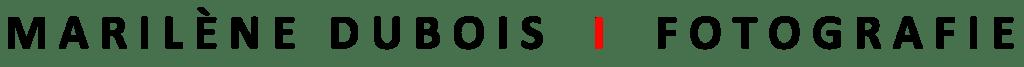 Logo len zwart groter