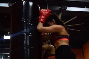 ashley boxing gloves