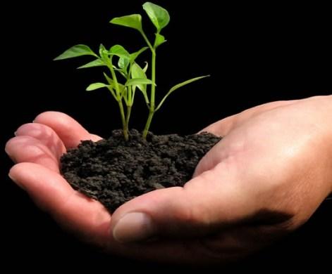 agricultural biotechnology market3.jpg