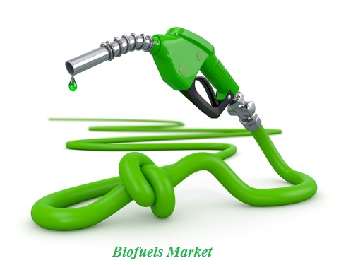 biofuel2.jpg