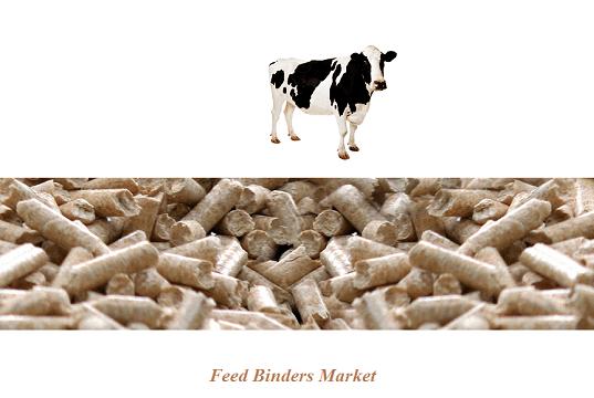 Feed Binders Market 12.png