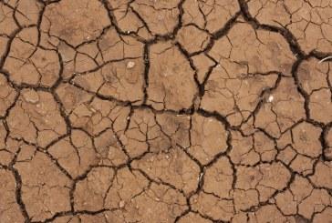 Le changement climatique a déjà un impact «clair» sur notre santé