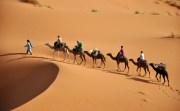 Sahara-Maroc-Morocco-Alizés-Travel-Voyage-Tourisme-Tourism