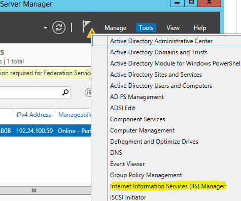 iis manager selection