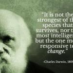 La evolución de la especie: del «homo maletensis» al Social Selling