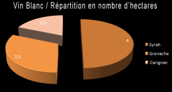 vin_blanc_repartition