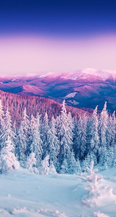 35 Winter iPhone Wallpapers to Spice Up Your Phone (Updated 2018)