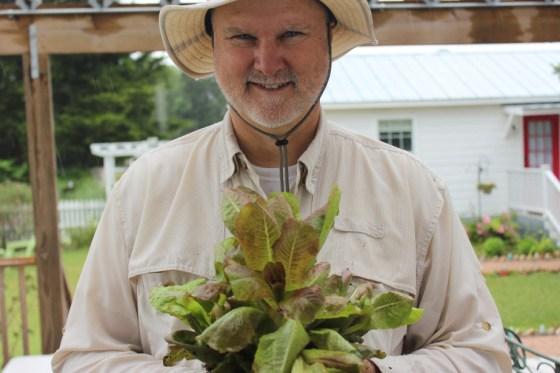 texas-lettuce