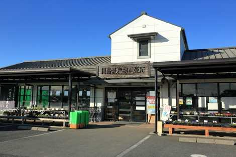 JA埼玉中央川島農産物直売所