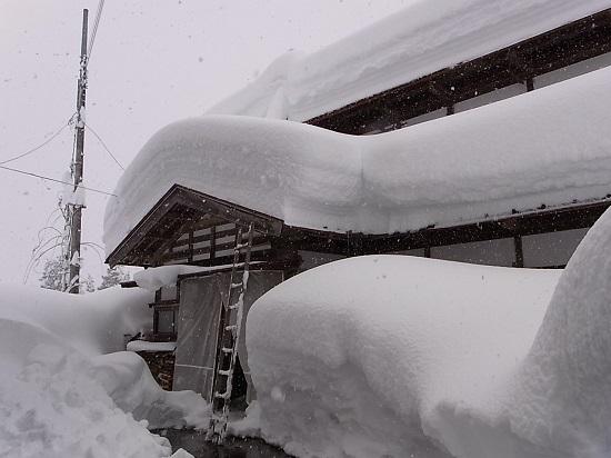 新潟県十日町市の雪.jpg