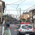 電柱倒れ道路を塞ぎ越谷の駅伝大会が中止