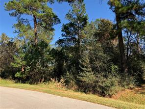 Property for sale at TBD Bridle Creek Drive, Magnolia,  Texas 77355