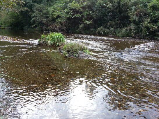 休暇村奥武蔵の近くの川