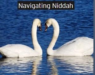 navigating niddah