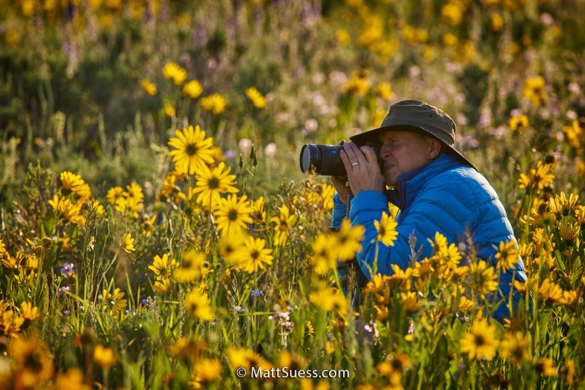 Photography Workshops, Private Instruction, Online Classes