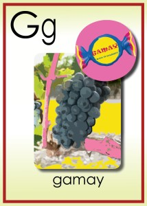 G is for Gamay
