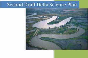 Second draft Delta Science Plan Cover