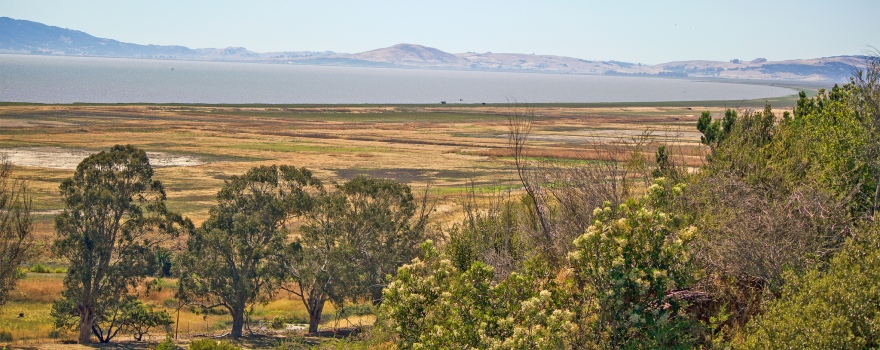 San Pablo Bay by USFWS