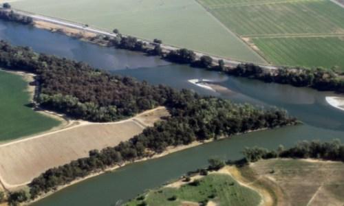 Sandbars in the Sacramento River, August of 2014
